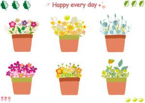 鉢植えの花の画像